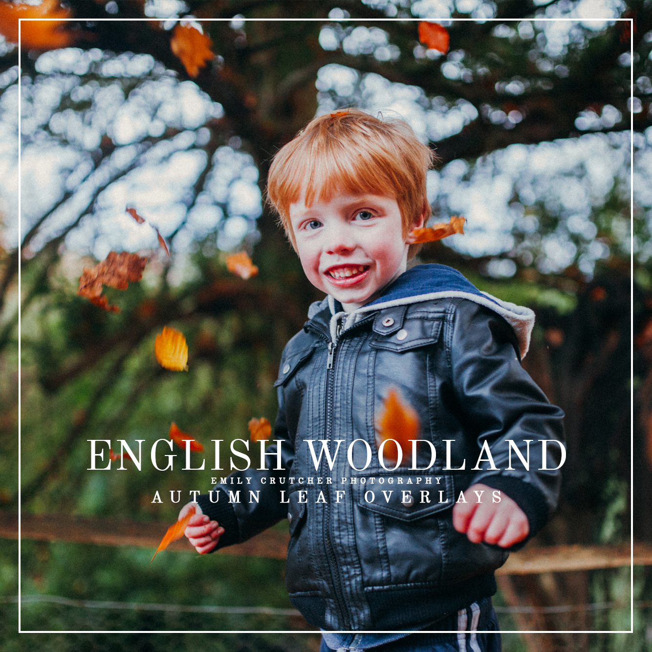 English Woodland Autumn Leaf Overlays