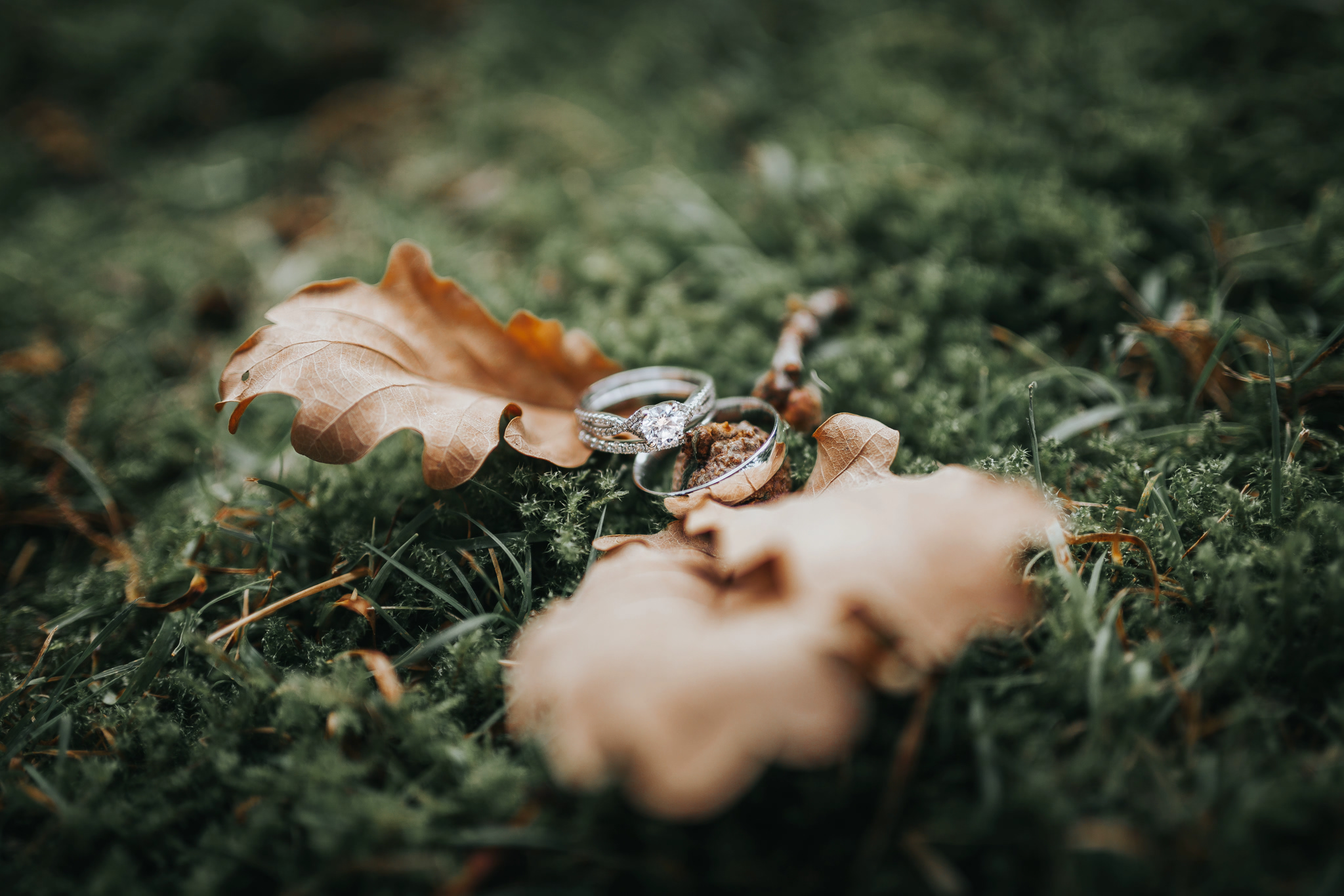 wedding ring photography natural leaves autumn outdoor