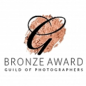 guild bronze 1 award photographers